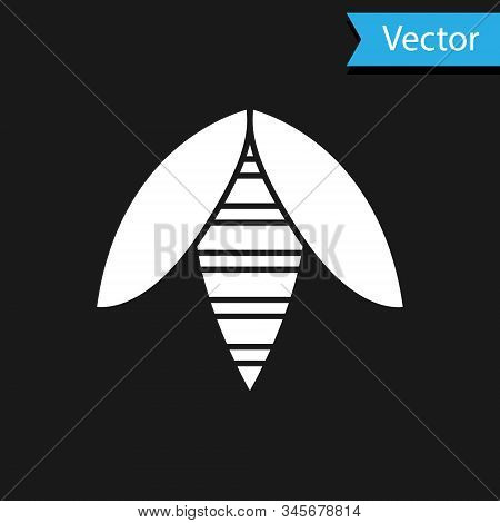 White Bee Icon Isolated On Black Background. Sweet Natural Food. Honeybee Or Apis With Wings Symbol.