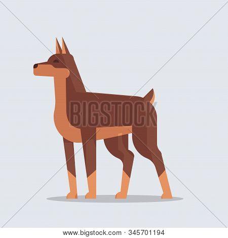 Doberman Dog Icon Furry Human Friends Home Pets Cartoon Animals Concept Full Length Vector Illustrat