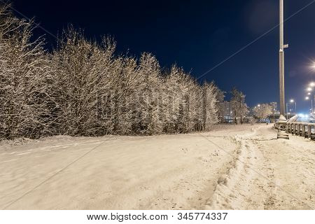 Winter Beautiful Landscape. Night Nature With Trees In The Snow. A Lot Of Fluffy Snow. City Landscap