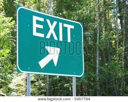 large green exit sign