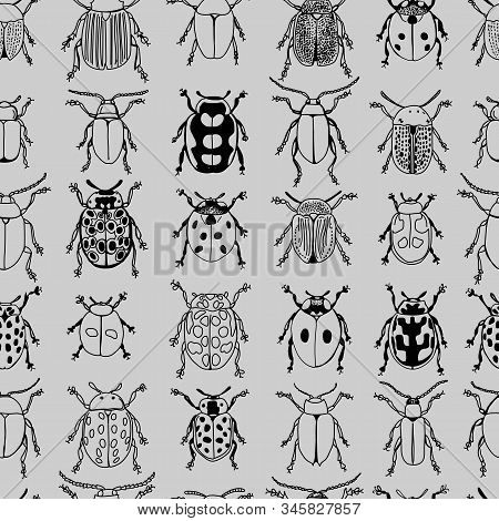 Monotone Beetles Black Linework Doodle Design Seamless Pattern On Grey Background