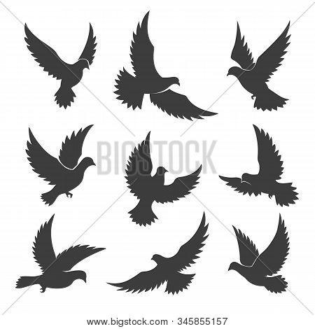Dove Spiritual Symbols. Vector Religious Spiritual Symbol Silhouettes, Flying Holy Dove Of Peace Or
