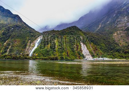 Magnificent powerful waterfall crashes down from the cliff of the fjord. New Zealand. Milford Sound fjord shore overgrown with marsh grass. Concept of exotic, active and photographic tourism