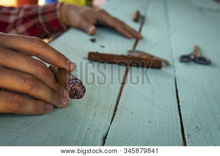 A Man Holds A Smoking Cigar. Cowboy Smokes A Homemade Cigar. Pernicious Habits. A Man Rolls A Tobacc