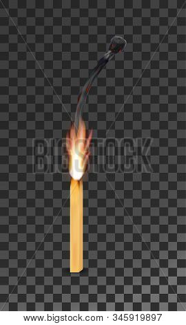 Burning Charred Wooden Match With Flame Vector Illustration