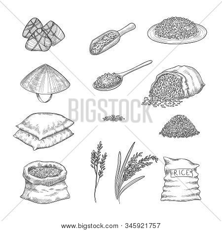 Doodle Rice. Agricultural Nature Collection Of Rice Sacks Grains Vector Hand Drawn Set. Illustration
