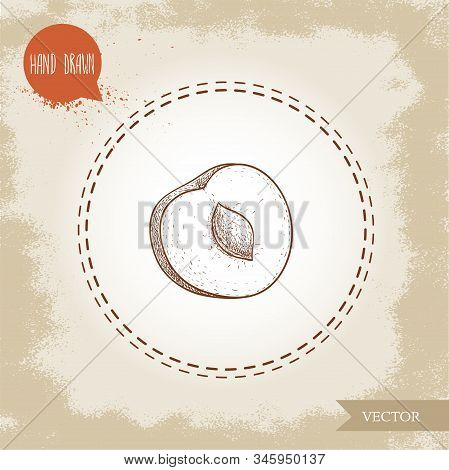 Hand Drawn Sketch Style Yellow Plum Mirabelle. Single Fruit Isolated On Retro Background. Vector Ill