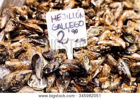 Showcase Of Mollusc In The Mercat De La Boqueria, Barcelona