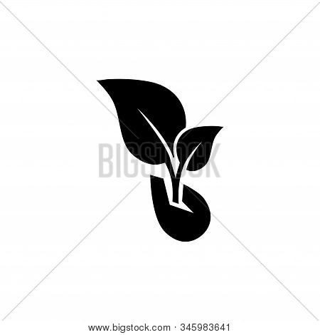 Sprouted Grains, Microgreen Sprout. Flat Vector Icon Illustration. Simple Black Symbol On White Back