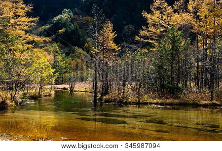 Clear Lake Taisho In Kamikochi National Park Landscape. Trees Shadow To Clear Lake On Sunrise In Mor