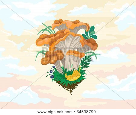 Mycelium, Red Mushrooms. Fall Fruits. Sky With Clouds On Background. Vector Flat Illustration