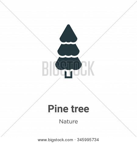Pine tree icon isolated on white background from nature collection. Pine tree icon trendy and modern