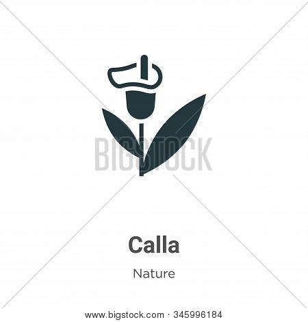 Calla Vector Icon On White Background. Flat Vector Calla Icon Symbol Sign From Modern Nature Collect