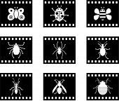 set of six bug film style icon buttons poster