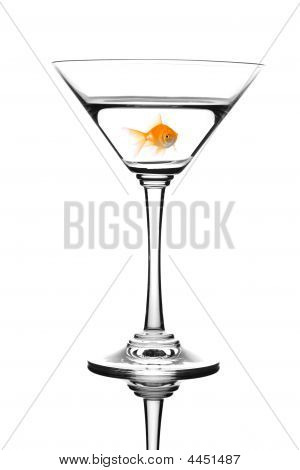 Golden fish swimming in martini cocktail isolated against white background poster