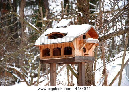 Luxurious Bird House At Wintertime