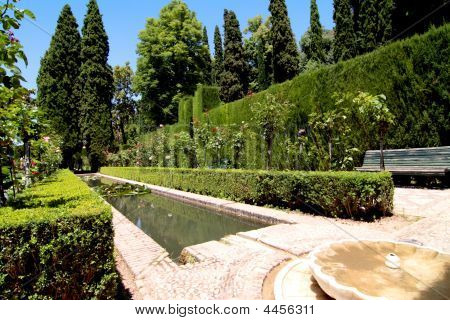 Garden Of A Palace