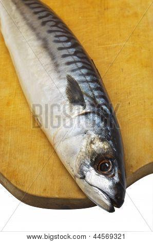 Mackerel, Lies On A Wooden Board