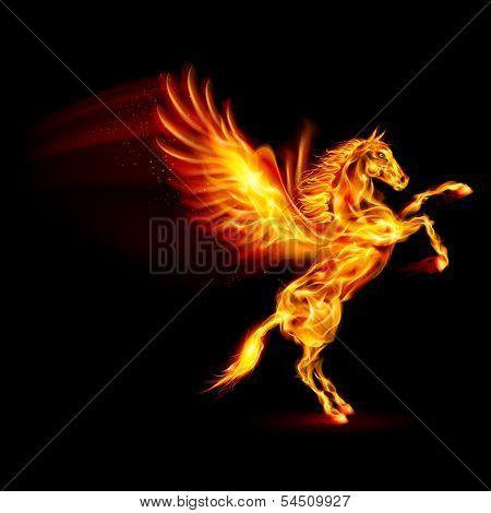 Fire Pegasus rearing up