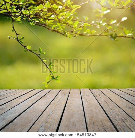Spring or summer background Empty table for photomontage