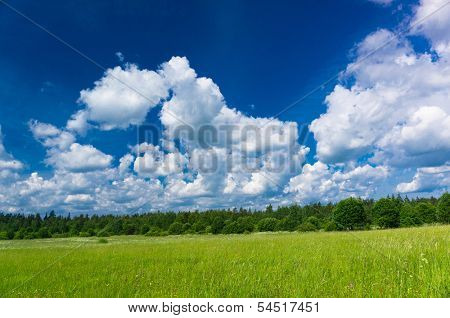 Fresh Landscape Plain Nature