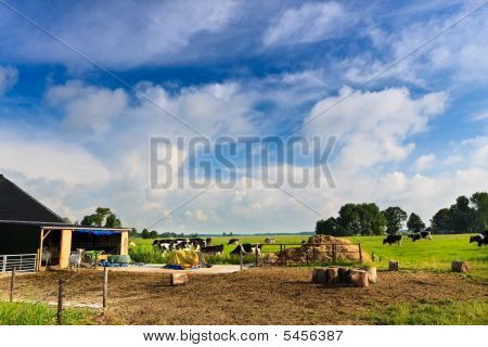 Countryside with farm and a grassland against blue sky ** Note: Slight blurriness, best at smaller sizes poster