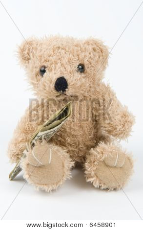 Little teddy bear with money in his hand poster