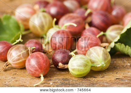 Fresh gooseberries I