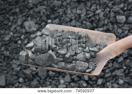 Shovel And Coal