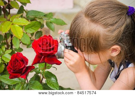 Child photographs of the flower rose.
