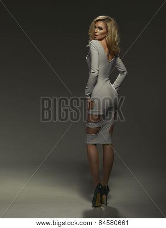 Sexy Blond Lady In Grey Dress On Dark Background