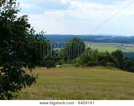 farmland, field