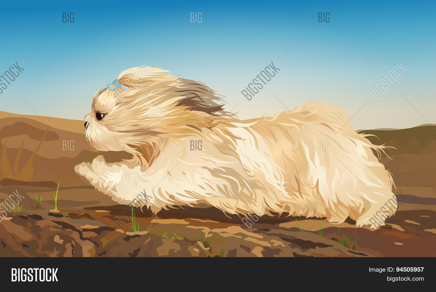 Shih Tzu Dog Fast Vector Photo Free Trial Bigstock