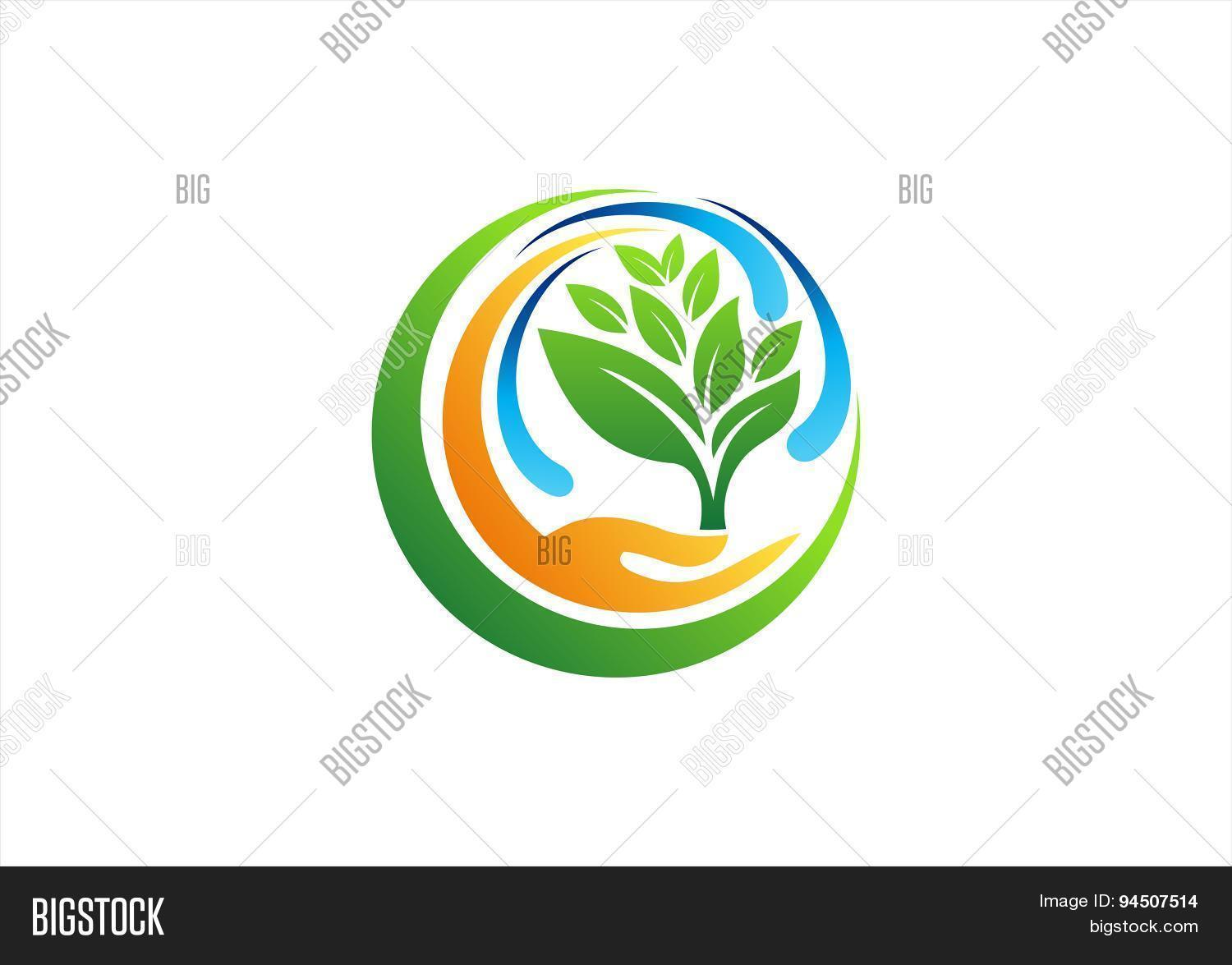 Plant circle hand logohealthy vector photo bigstock close image preview image preview buycottarizona Images