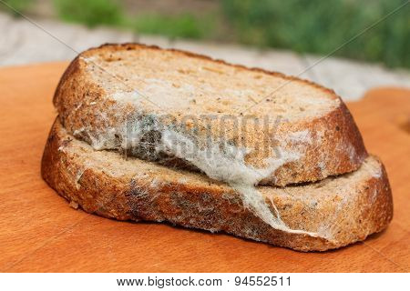 The old black mold on the bread. Spoiled food. Mold on food. poster