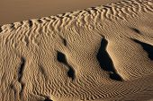 rippled texture along ridge in Great Sand Dunes National Park, Colorado poster