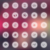 Silhouette germ and pathogen for human disease such as virus bacteria fungus amoeba and Protozoa icon collection set with glossy colorful abstract background create by vector poster