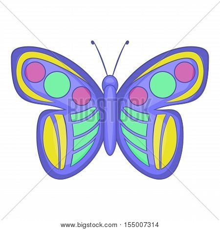 Insect butterfly icon. Cartoon illustration of butterfly vector icon for web design