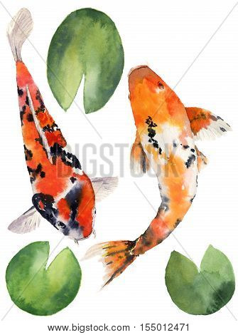 Watercolor oriental rainbow carp with water lily leaves set. Koi fishes isolated on white background. Underwater illustration for design, background or fabric.