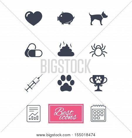 Veterinary, pets icons. Dog paw, syringe and winner cup signs. Pills, heart and feces symbols. Report document, calendar icons. Vector