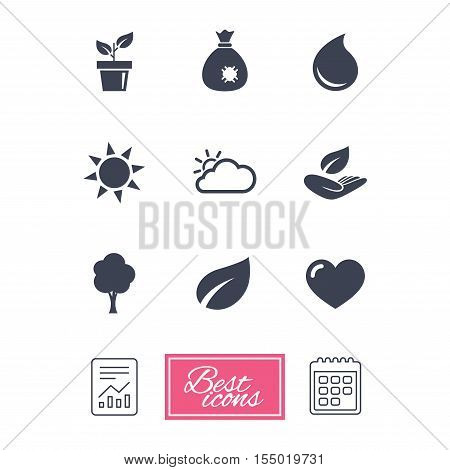 Garden sprout, leaf icons. Nature and weather signs. Sun, cloud and tree symbols. Report document, calendar icons. Vector