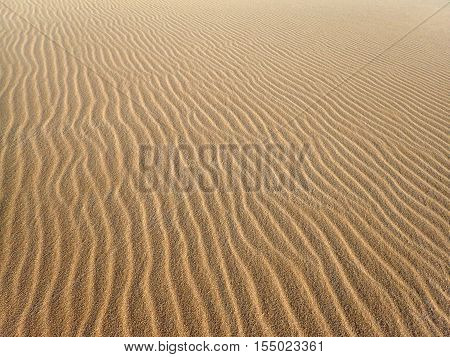 Wavey patterns of Grains of Beach Sand on Molokai forming a pattern of hills and valleys dune like.