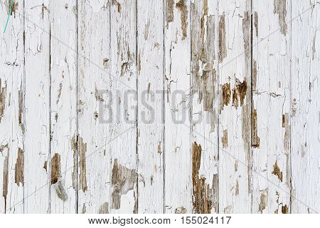 Old White Weathered Wooden Background No. 2