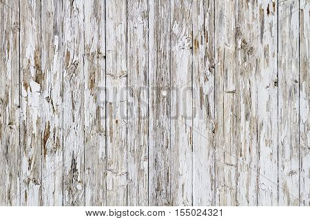 Old White Weathered Wooden Background No. 8