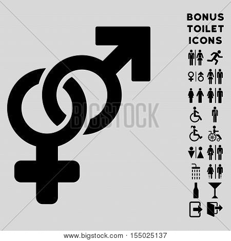 Heterosexual Symbol icon and bonus man and lady WC symbols. Vector illustration style is flat iconic symbols, black color, light gray background.