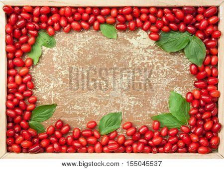 Fresh picked dogwood berries in a wooden frame with copyspace in the middle