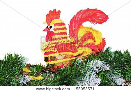 Cash Cockerel - the symbol of the New year sitting on fir branches. isolated on white background