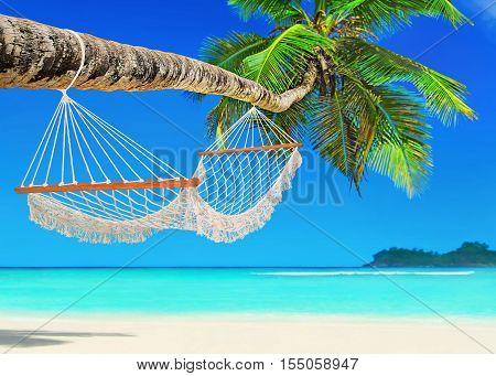 Wooden mesh hammock on perfect tropical white sandy coconut palm beach Baie Lazare Mahe island Seychelles Indian Ocean