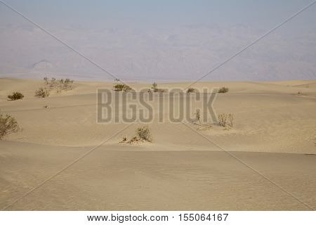 Mesquite Flat sand dunes in Death Valley California