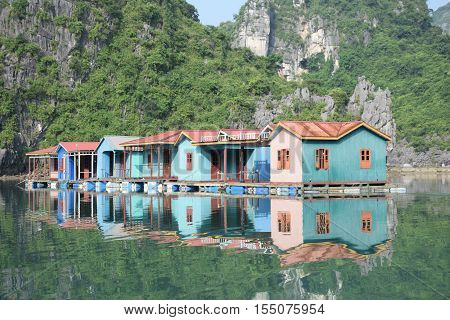 Blue floating houses with green mountains reflecting in the water in Halong bay, Vietnam